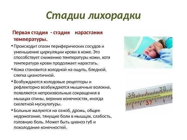 Почему у ребенка холодные ноги при температуре