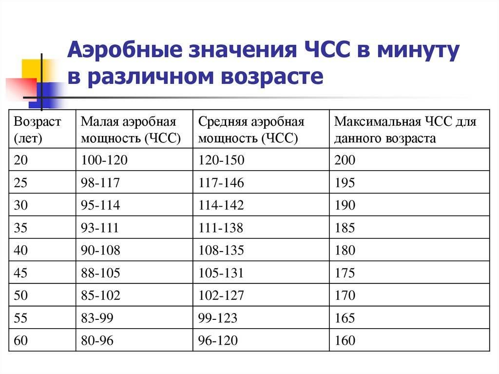 Пульс при физических нагрузках. норма у женщин, мужчин, детей, подростков, спортсменов
