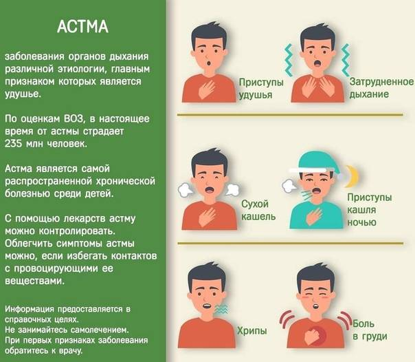 Бронхиальная астма у детей - симптомы болезни, профилактика и лечение бронхиальной астмы у детей, причины заболевания и его диагностика на eurolab