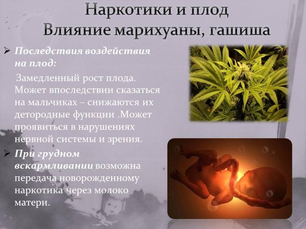 Влияние вредных факторов окружающей среды на беременность