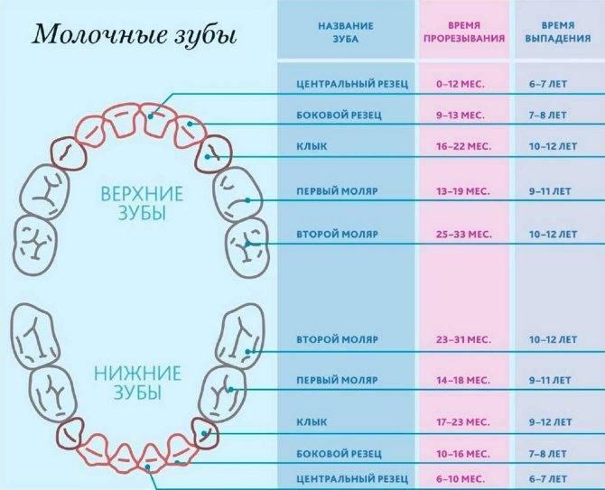 Нарушения прорезывания зубов