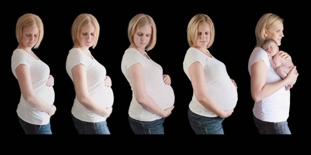 Сантиметры жизни: как изменяется живот беременной женщины. размеры живота у беременных