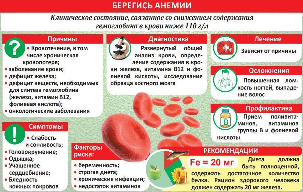Гемоглобинопатии. причины, симптомы и прогноз при гемоглобинопатиях