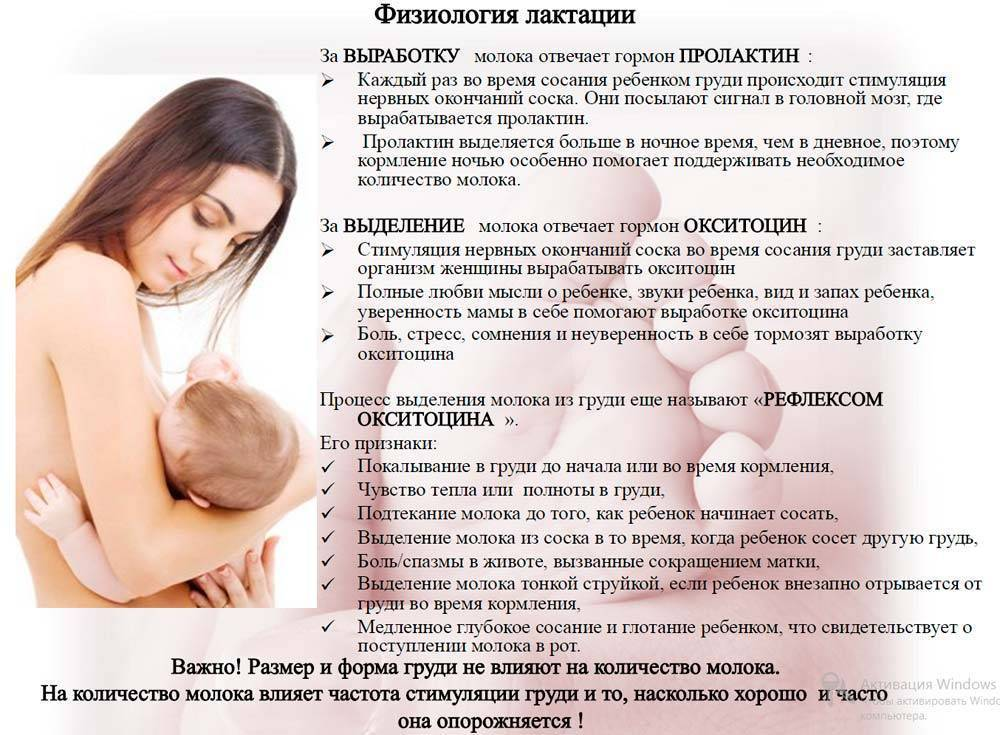 Все о кормлении грудью - правила грудного вскармливания, механизм образования молока, сцеживание молока, трещины сосков, диета и гигиена кормящей матери :: polismed.com
