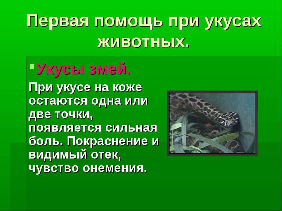 Лечение укусов ядовитых змей: противоядие