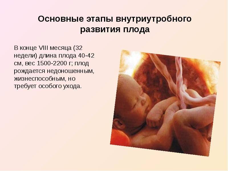 С какой недели плод считается жизнеспособным, и ребенок может выжить при родах? — беременность