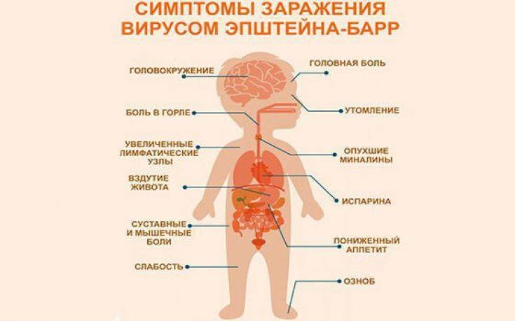 Герпес-вирусные инфекции - доказательная медицина для всех