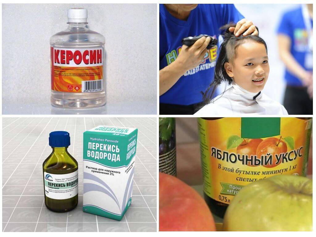 Что делать, если у ребёнка педикулёз? памятка для родителей
