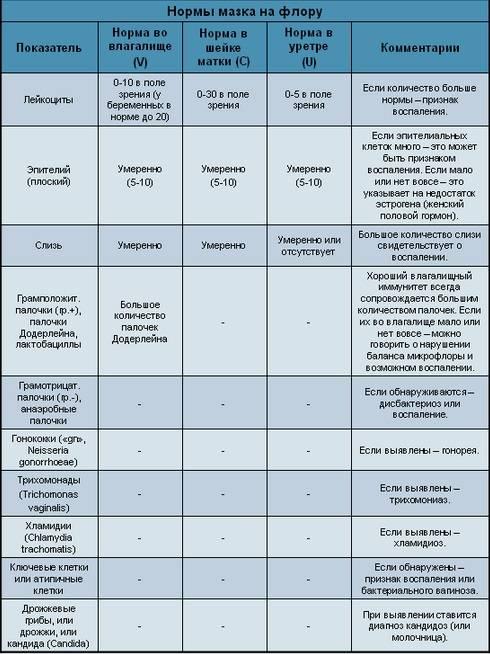 Гинекологические мазки на флору: как берут, что показывают, как расшифровываются