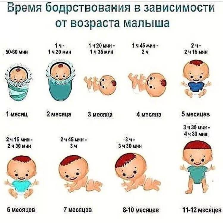 Сколько бодрствует ребенок в 1 месяц: продолжительность сна и игр, время прогулок, советы опытных педиатров