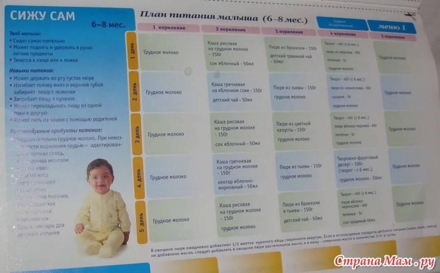 Меню ребенка в 8 месяцев: рацион питания, чем кормить 8-месячного малыша
