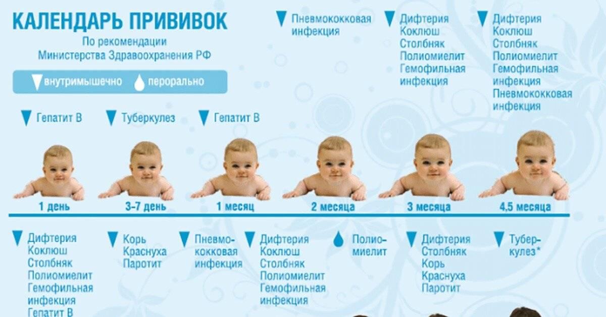 Врачи, которых нужно проходить в 1 месяц новорожденным: каких специалистов, список