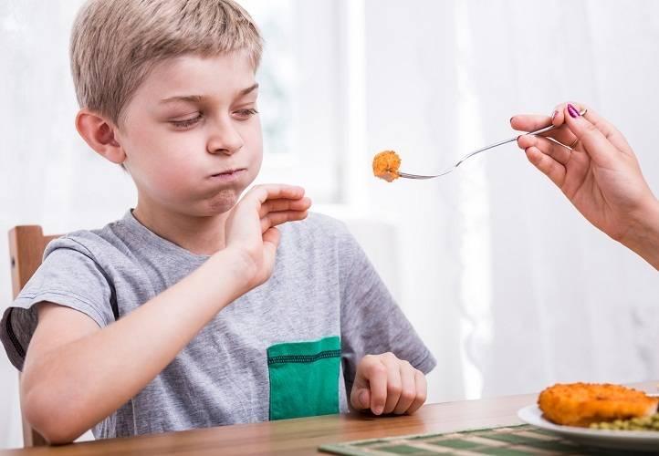 Ребенок не ест мясо   любящая мама