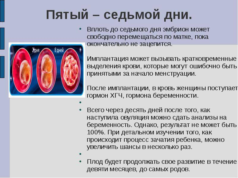 Сколько эмбрионов подсаживают при эко