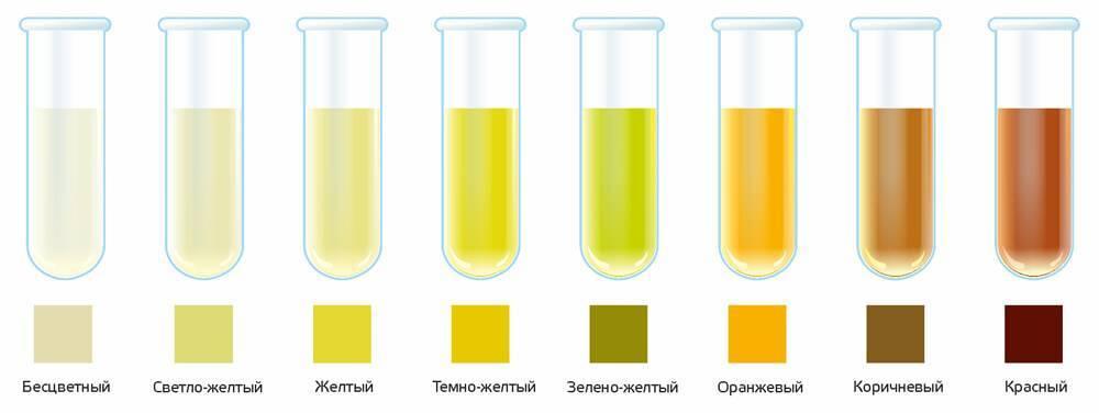 Ярко-желтая моча у ребенка: норма, причины, рекомендации