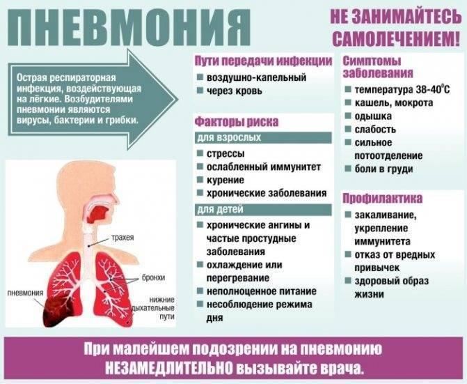 Очаговая пневмония у детей : причины, симптомы, диагностика, лечение   компетентно о здоровье на ilive