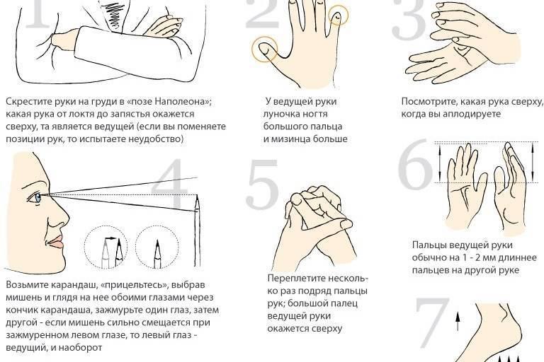 Тесты и методики для определение леворукости
