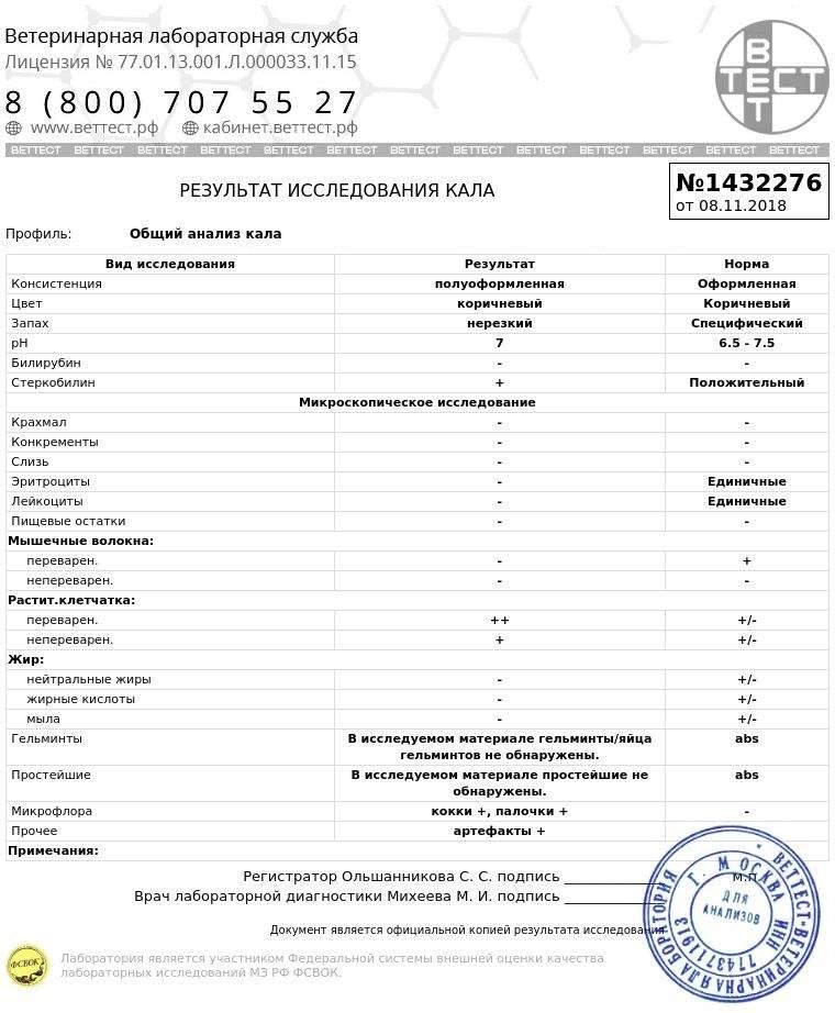 Анализ крови на глистов * клиника диана в санкт-петербурге