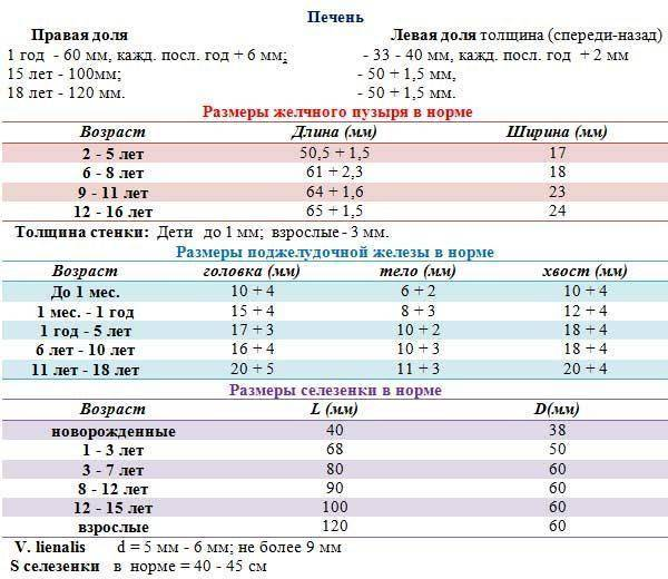 Узи печени для начинающих (лекция на диагностере) - диагностер