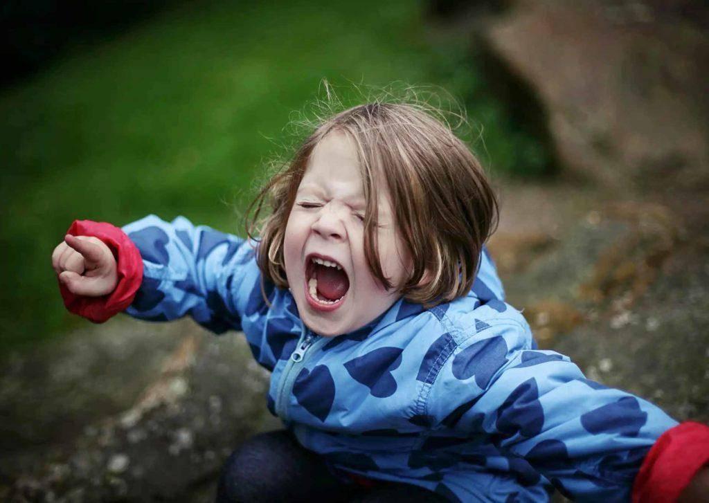 Капризы, истерики, ребенок бесится, дерется, говорит мало слов, звуками подражает животным