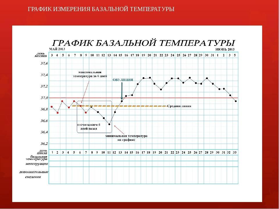 Ректальная температура при беременности на ранних и поздних сроках: норма, причины отклонения