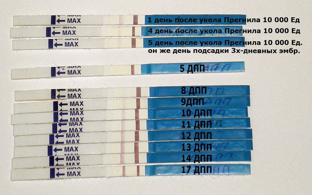 Через сколько дней задержки тест покажет беременность: когда делать тест на беременность после зачатия