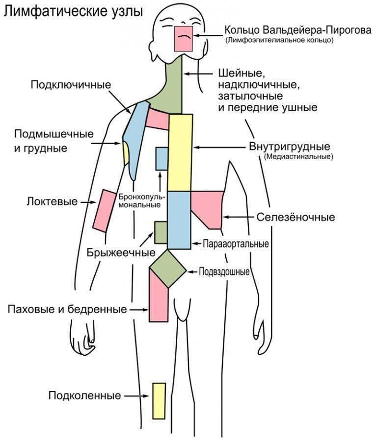 Гиперплазия лимфоузлов