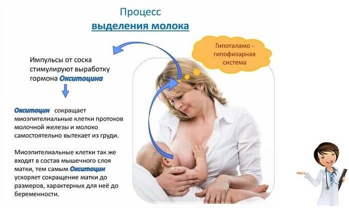 Когда приходит молоко после кесарева сечения или особенности налаживания грудного вскармливания после операции