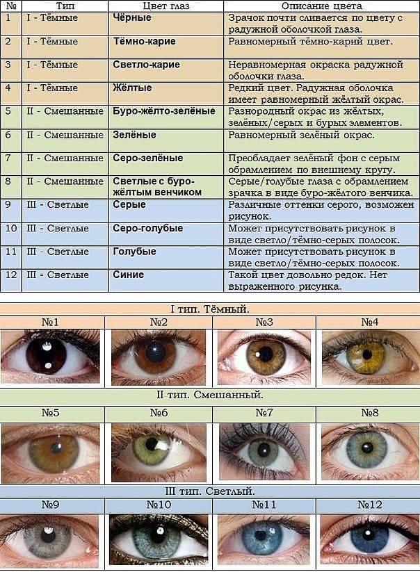 Когда меняется цвет глаз у новорожденных таблица изменений