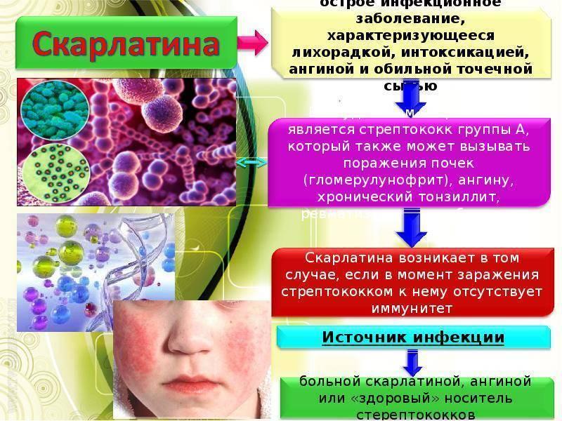 Врожденные вирусные инфекции: симптомы, причины, осложнения — онлайн-диагностика