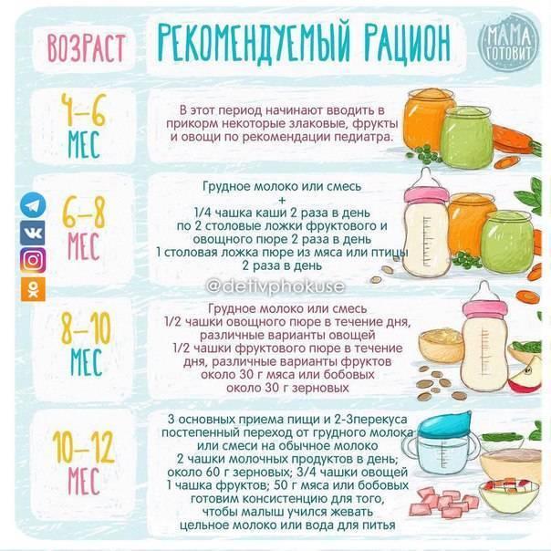 Правила прикорма детей — медицинский портал «мед-инфо»