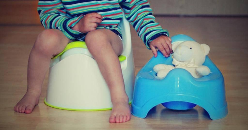 Как приучить ребенка к горшку, в каком возрасте, и как быстро приучить ребенка ходить на горшок