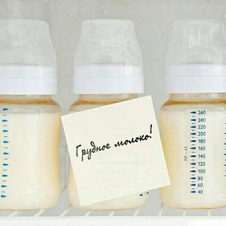 Срок хранения грудного молока в холодильнике