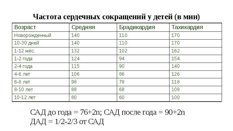 Чсс и чдд у детей какая норма по таблице с ад у новорожденных и по возрастам, подсчет показателей ча