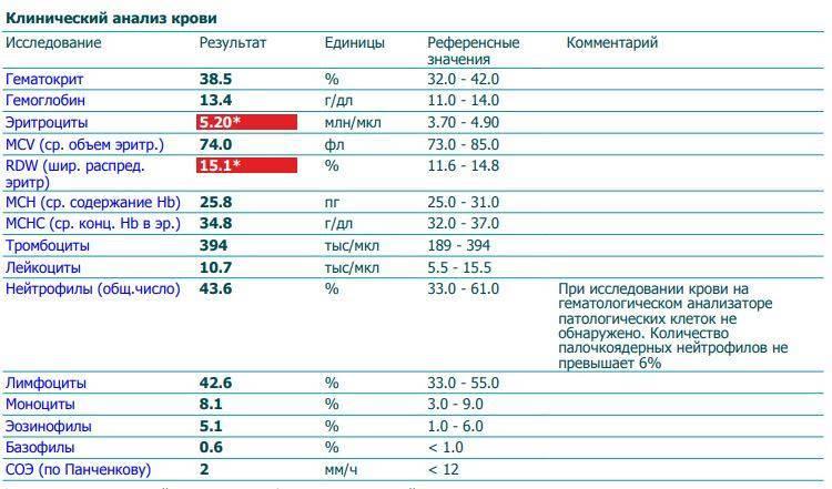 Индекс распределения эритроцитов понижен: что это значит, относительная ширина анизоцитоза по объему ниже нормы в анализе крови, низкий показатель rdw sd, cv, понижен у ребенка грудничка, взрослого, причины, занижена, mcv