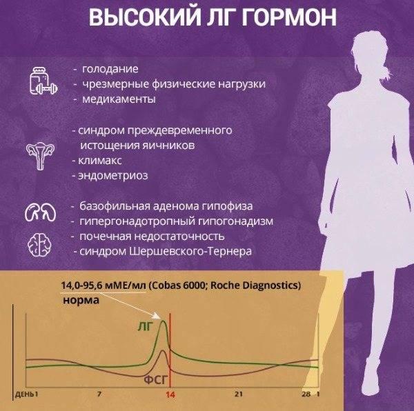Лютеинизирующий гормон — большая медицинская энциклопедия