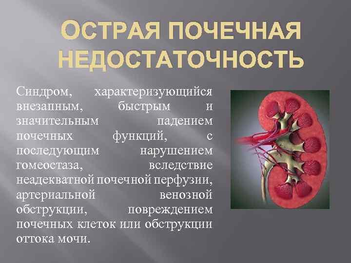 Пиелонефрит при беременности   особенности пиелонефрита почек у беременных