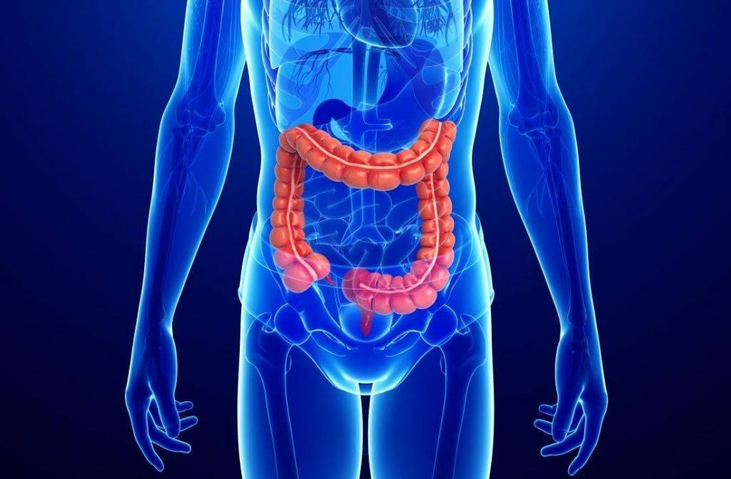 8 признаков больного кишечника