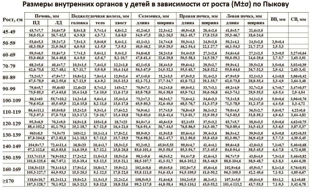 Размеры печени у детей в норме: таблица по УЗИ, КВР, параметры воротной вены и другие показатели