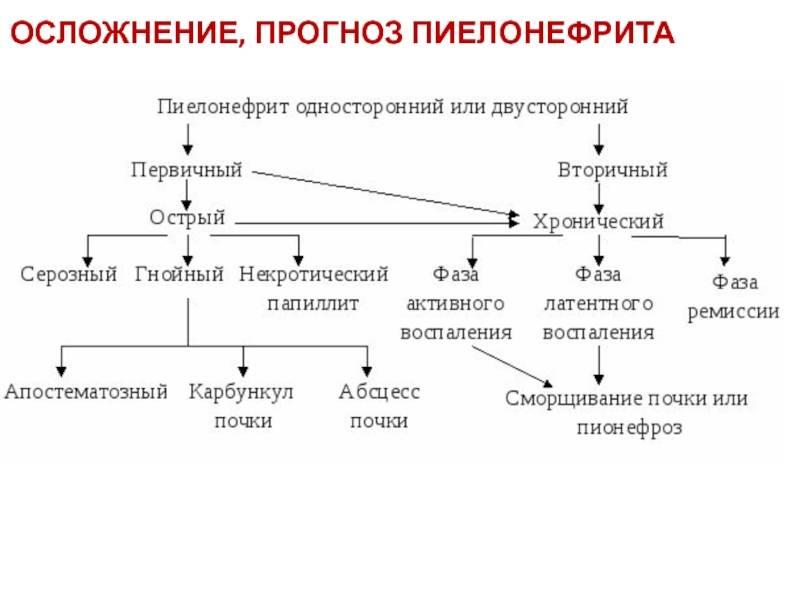 Пиелонефрит: причины, симптомы, методы диагностики и лечения. диагностика и лечение хронического пиелонефрита