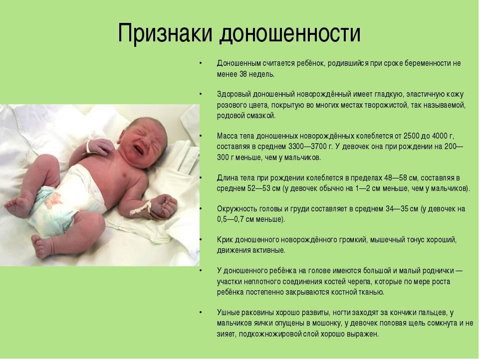 Четвертая беременность. как решиться на четвертого ребенка. многодетная семья.