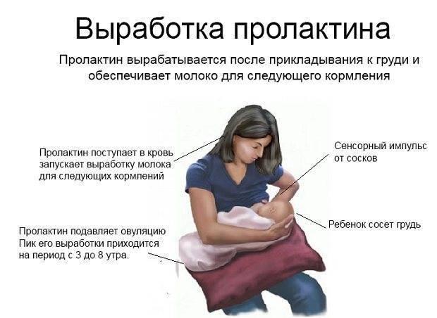 Вскармливание младенца, рожденного через кесарево сечение. грудное вскармливание после кесарева