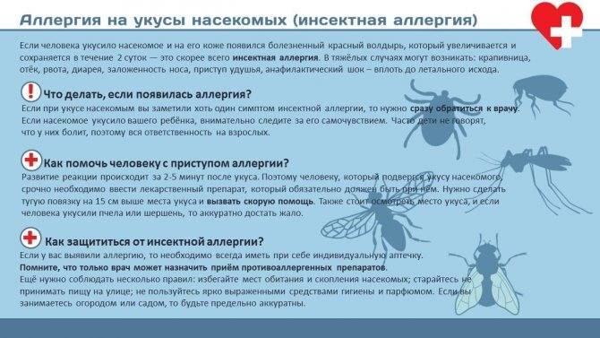 Укусы муравьев: как выглядят, последствия, лечение | компетентно о здоровье на ilive