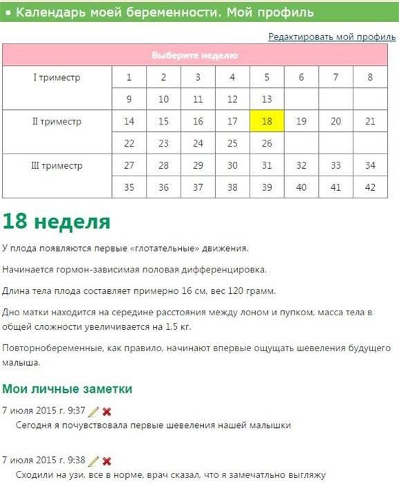 Календарь беременности: рассчитать онлайн для беременных. особенности расчета и интерактивный акушерский календарь 2021. расчет по триместрам, месяцам, неделям и дням