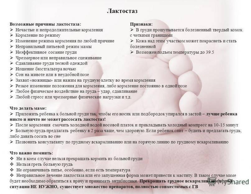 Заболевания молочной железы (мастит, мастопатия, рак молочной железы). диагностика и лечение