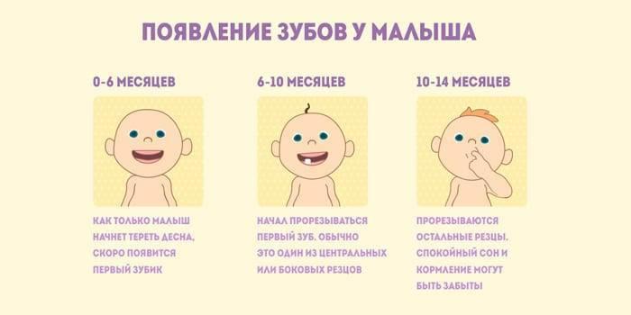 Во сколько первый зуб у ребенка. во сколько режутся зубы у грудничков: сроки, симптомы, помощь