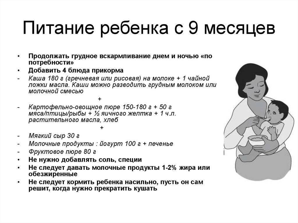 Рацион ребенка в 7 месяцев на грудном вскармливании