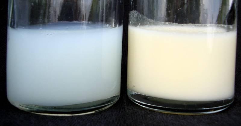 Каково грудное молоко на вкус? каким должно быть на вкус грудное молоко в норме и почему