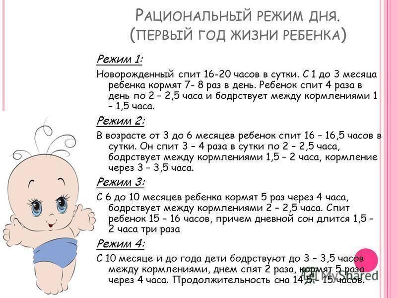 Сон новорожденного ребенка в 3 месяца: нормы дневного и ночного отдыха для грудничков