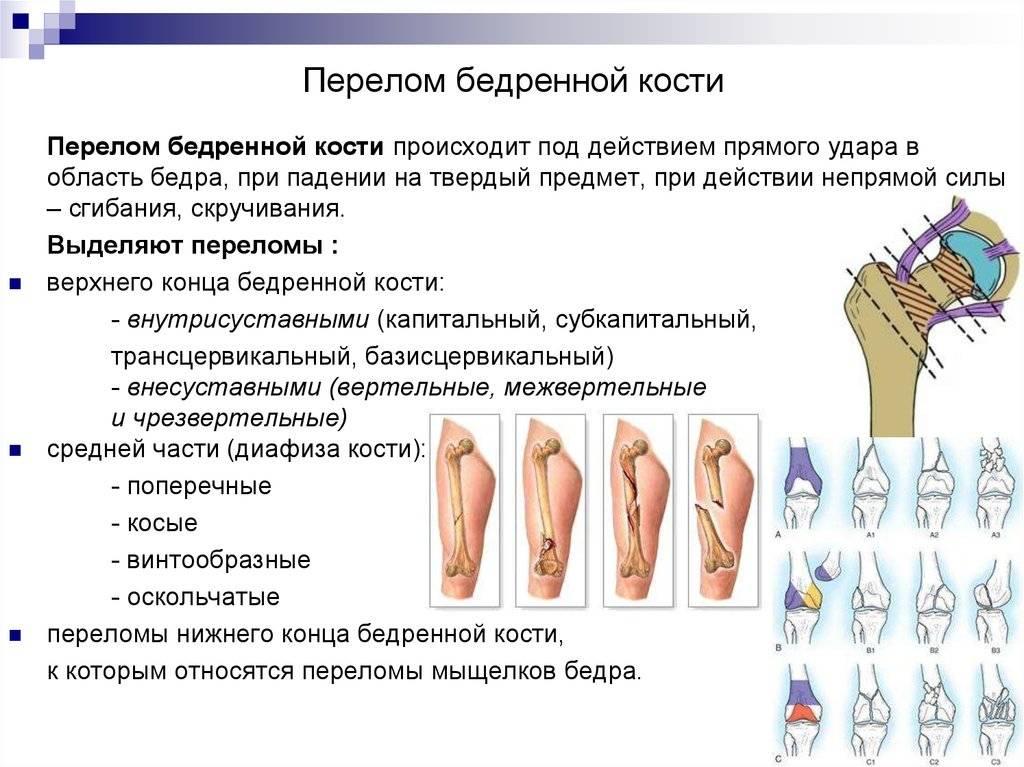 Травмы копчика: что это такое, причины, симптомы и способы лечения - московский центр остеопатии
